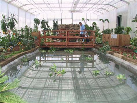 casa delle farfalle casa delle farfalle co un centro di educazione ambientale