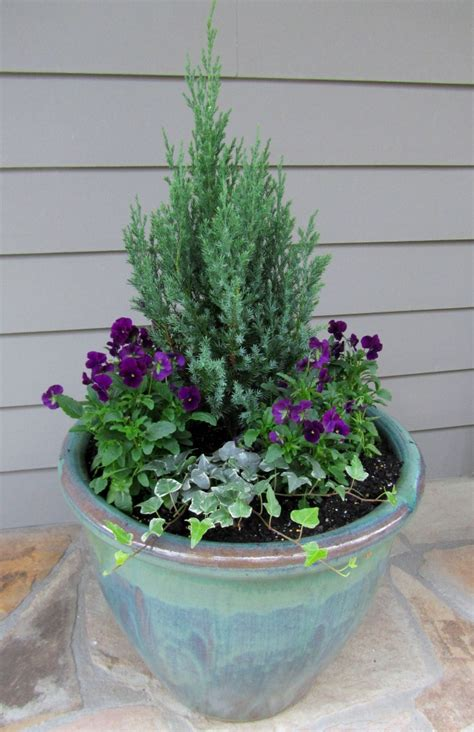 Evergreen Planters by Our Front Porch Winter Container Gardens