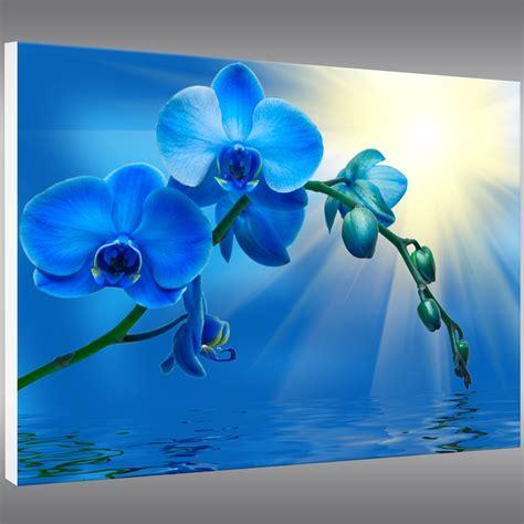 Wallpaper Stiker 10mtr X 45cm 31 tableau forex orchid 233 e pas cher