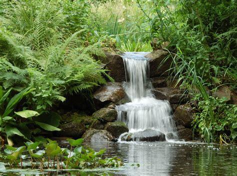 Wasserlauf Im Garten 98 by Kleiner Wasserfall Bontanischer Garten Foto Bild