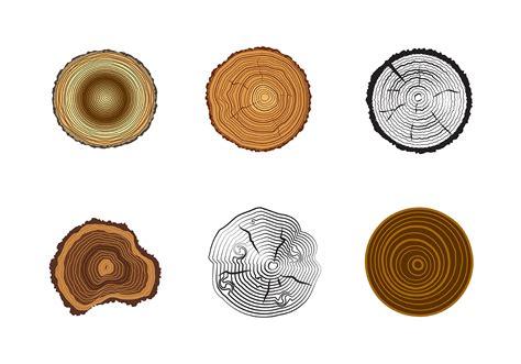 tree rings vector   vectors clipart