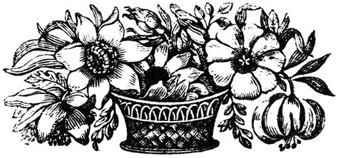 public domain images floral baskets  graphics fairy