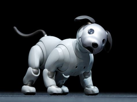 sony robot sony robot aibo is back with new ai upgrades fortune