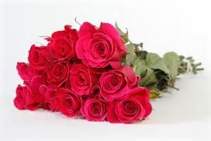 roses bouquet mini bouquets bouquets mixed bouquets floracause