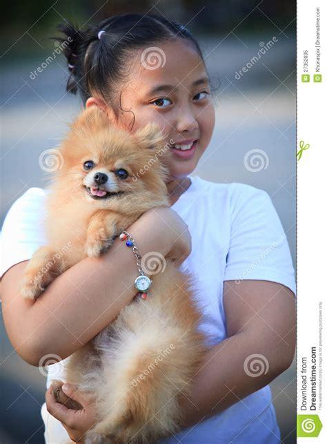 asian pomeranian asian hug pomeranian royalty free stock photo image 27352035