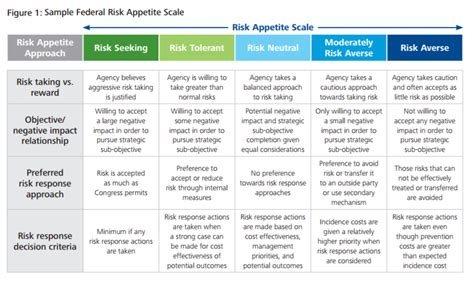 risk appetite template federal cfo five steps to developing a comprehensive risk