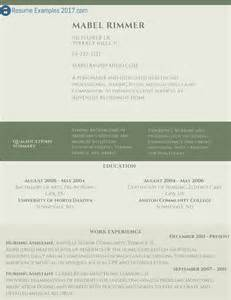 professional resume exle to try resume exles 2017