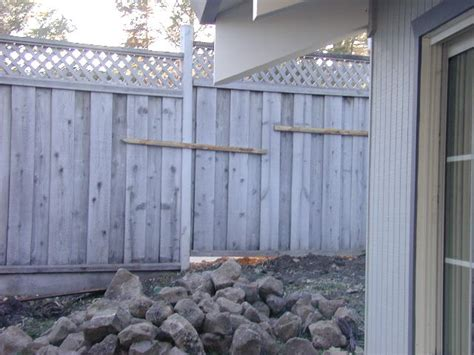 removable fence section landscaping week 2