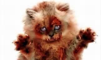 Web images zombie cat