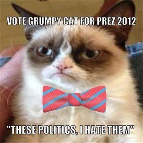 grumpy cat for president 2016 grumpy cat for president dump a day