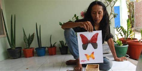 membuat kolase kupu kupu dari daun kering gambar toko online kupu koleksi daun bunga renda dekorasi