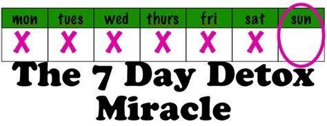 7 Day Detox Miracle Diet Plan by Top 5 Detox Myths Debunked Elicia Miller