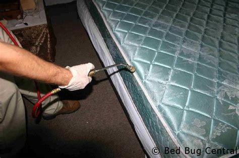 bed bugs        bed bedbug central