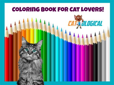 catological coloring book for cat 50 unique page designs for hours of cat coloring books catological s new coloring book for cat