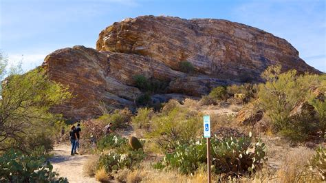 150 Meters To Miles by Saguaro National Park In Tucson Arizona Expedia