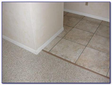 Vinyl Tile To Carpet Transition Strips   Tiles : Home