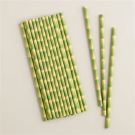 Bamboo Paper - bamboo paper straws 25 pack world market