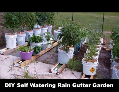 diy self watering herb garden diy indoor seed starting rack