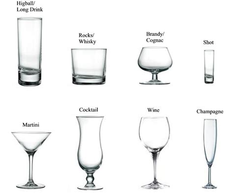 types of barware types of glasses stunning of an introduction to the types