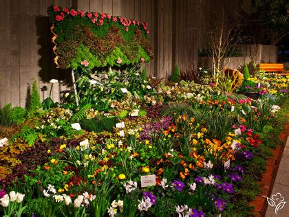 Preview Of The Northwest Flower And Garden Show 171 Cbs Seattle Flower Garden Show Seattle