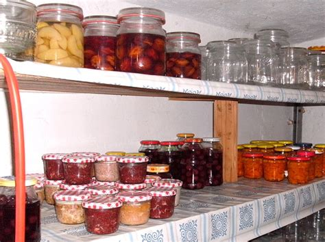Food Pantry Wiki by 7 Reasons Refuse To Prepare For Disaster