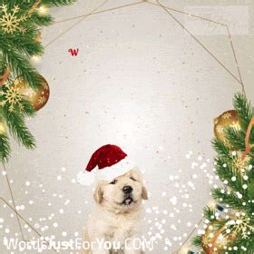 cute merry christmas gif  words     downloads   sharing