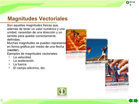 imagenes vectoriales definicion magnitudes vectoriales