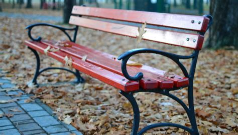 park bench exercises how to get a killer workout when you only have a park bench