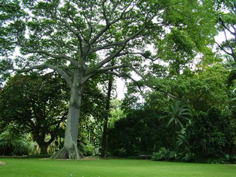 Foster Botanic Garden Foster Botanical Garden