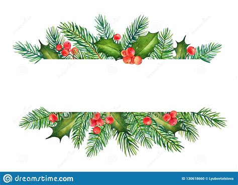 christmas element  watercolor branches  holly  pine tree stock illustration