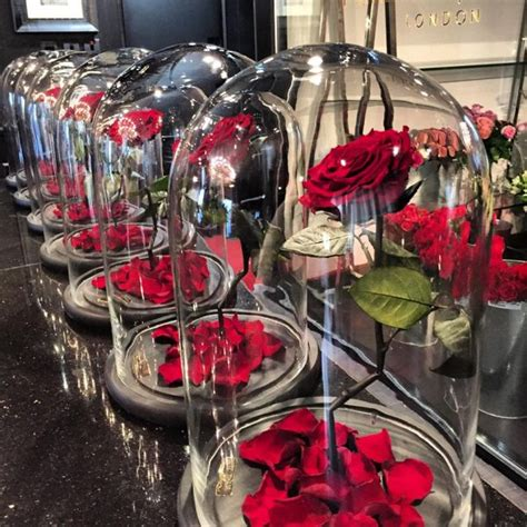 beauty and the beast forever rose company is selling these 100 natural roses that last
