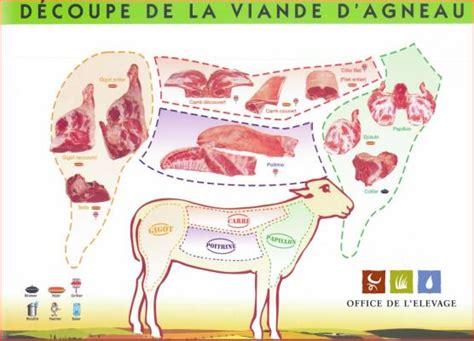 2206033216 la decoupe des viandes de schema decoupe viande agneau