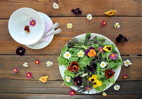 11 daftar edible flowers bunga yang bisa dimakan bibit