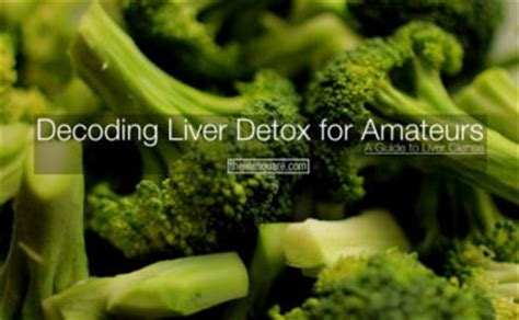 Liver Detox For Dummies by 9 Steps To Prevent Hair Loss After Pregnancy Thelifesquare