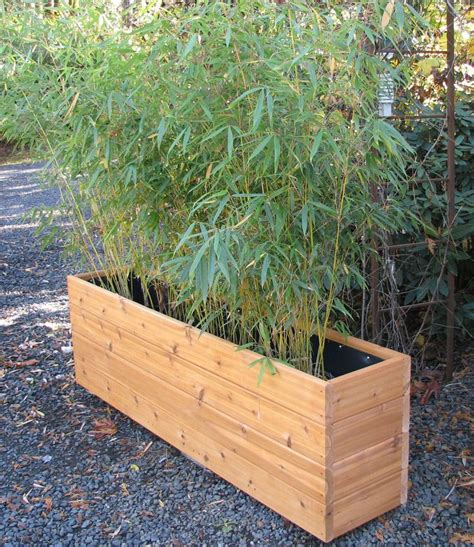 Privacy Fence Planter Box by Best 25 Bamboo Planter Ideas On Bamboo
