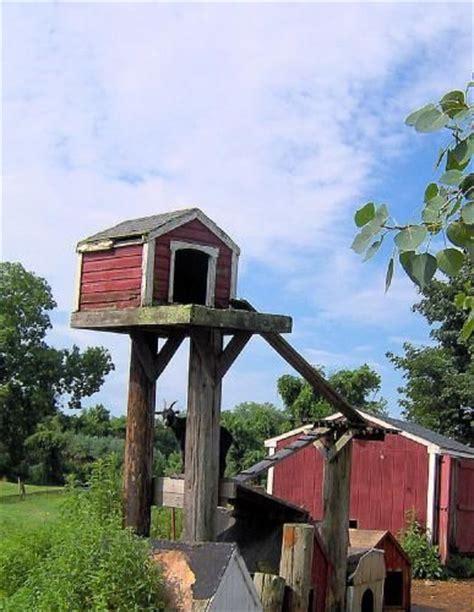 Farm Shop Floor Plans 15 goat s playground ideas for your farm farmcradle tm