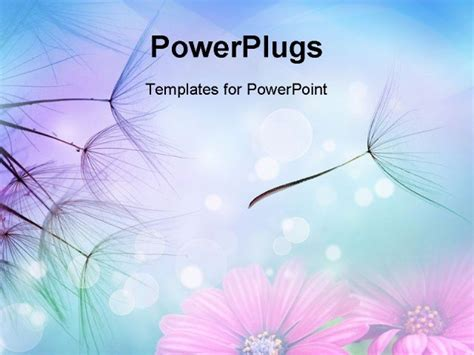 beautiful free powerpoint templates beautiful powerpoint
