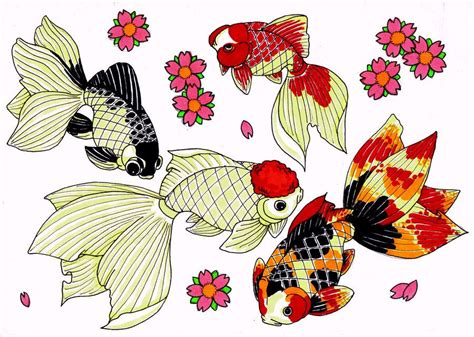 Goldfish Japanese Flash Sheet By Modifiedmonster Japanese Flash