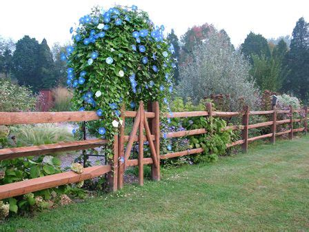 enolivier com vegetable garden with fence as long as split rail fencing gives pets a nice view of their