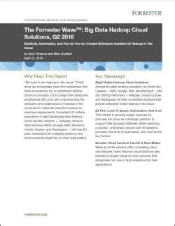 research paper on hadoop the forrester wave big data hadoop cloud solutions q2