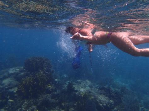 catamaran vieques snorkeling picture of vieques island powercat esperanza