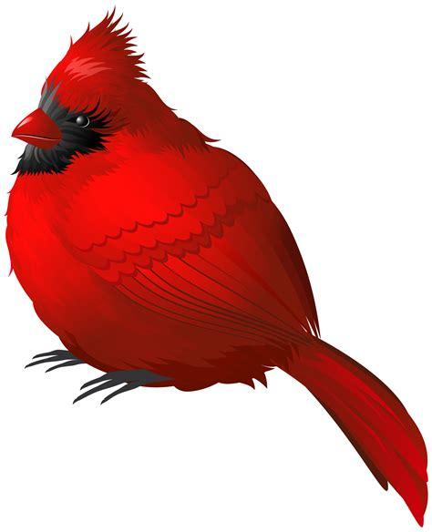 birds clipart bird clipart winter pencil and in color bird clipart winter