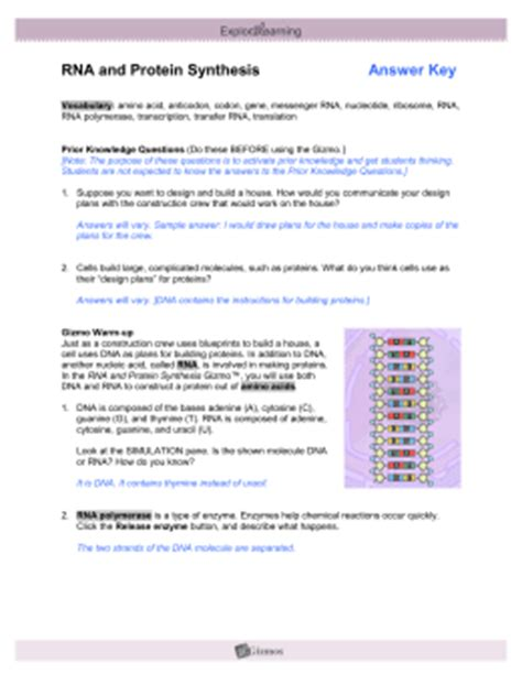 section 10 3 protein synthesis answers building dna answer key