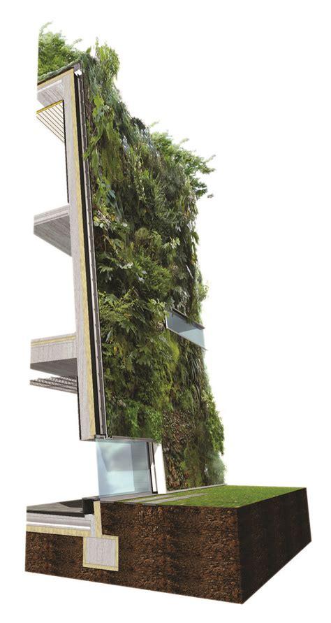 green wall detail section 145 best images about green building envelope on pinterest