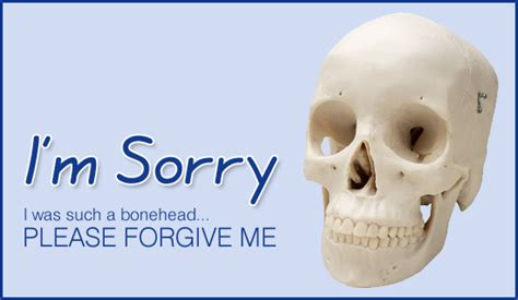 free bonehead i m sorry ecard email free personalized and sorry cards