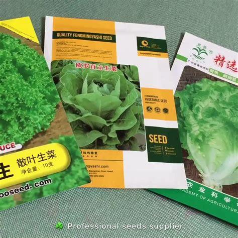 vegetable seeds for sale organic seeds vegetables romaine lettuce seed leaf lettuce