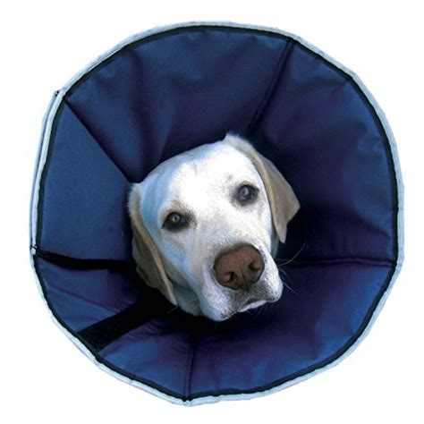 soft e collar for dogs zenpet procone pet e collar for dogs and cats comfortable soft recovery collar is
