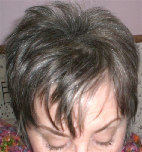 how to color hair to blend in gray coloring gray hair thriftyfun