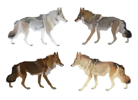 wolf colors co squalled 101 by cyanlights on deviantart