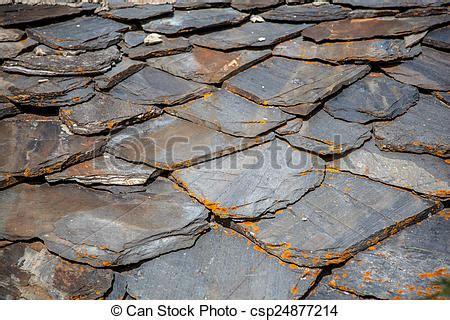 azulejo xisto azulejo ard 243 sia pretas telhado azulejos lichen xisto